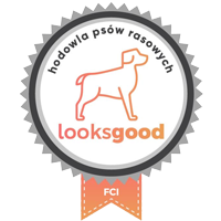 looksgoodfci logo